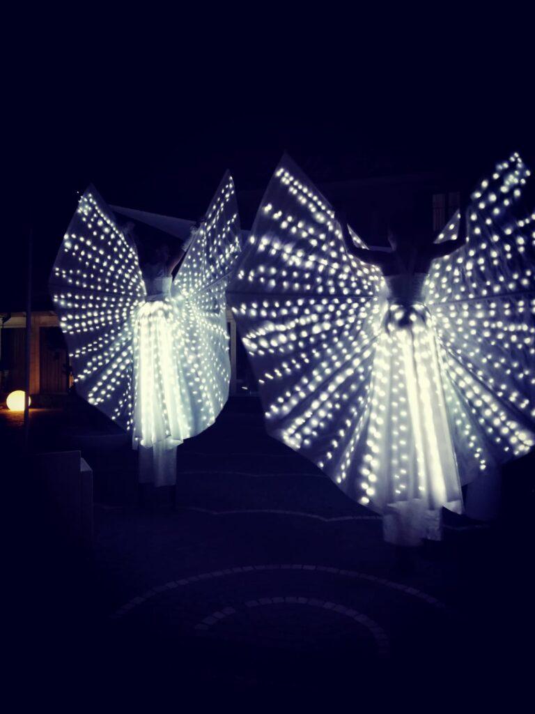 farfalle_luminose_2