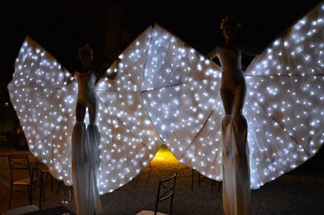 farfalle_luminose_spettacolo_2